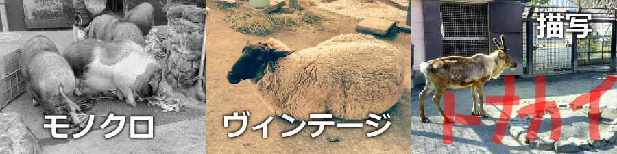 TONE 画質編集2