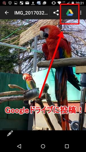 トーンモバイル Googleドライブ